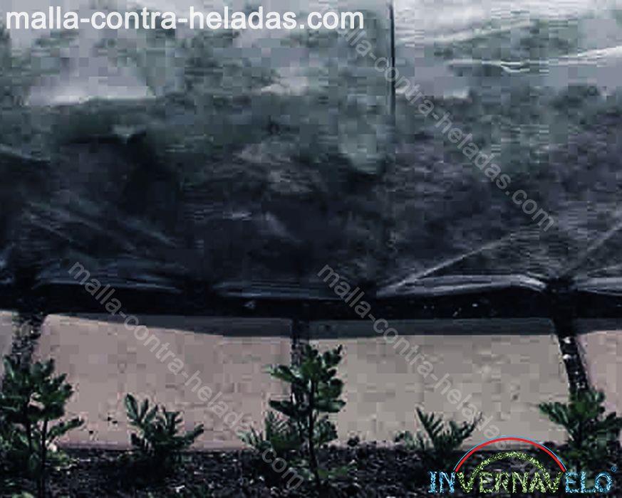 Micro túnel protegiendo cultivos de climas exteriores.