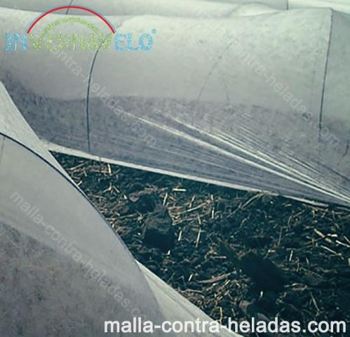 Micro túneles protegen y controlan los cultivos.